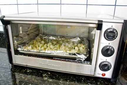 frites in the toaster oven