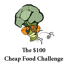 Cheap & Healthy Food under $100 per month